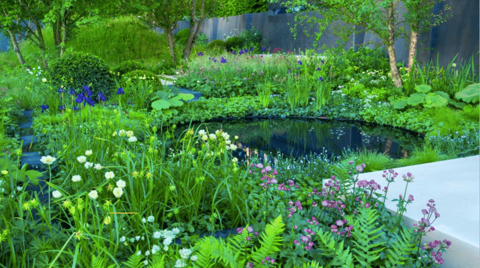 The Soldiers' Charity Garden by Charlotte Rowe – RHS Chelsea 2014